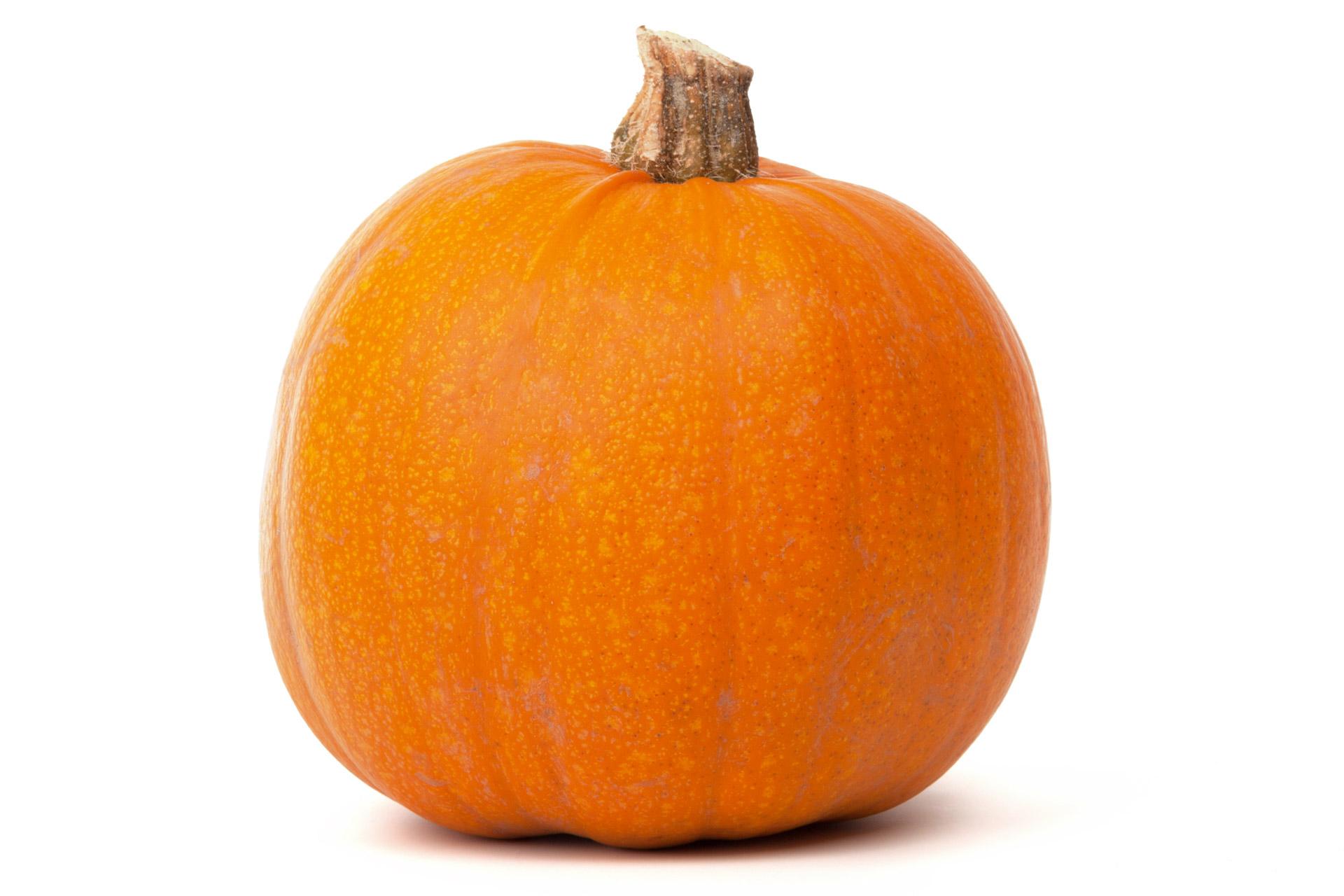 pumpkin priority seed